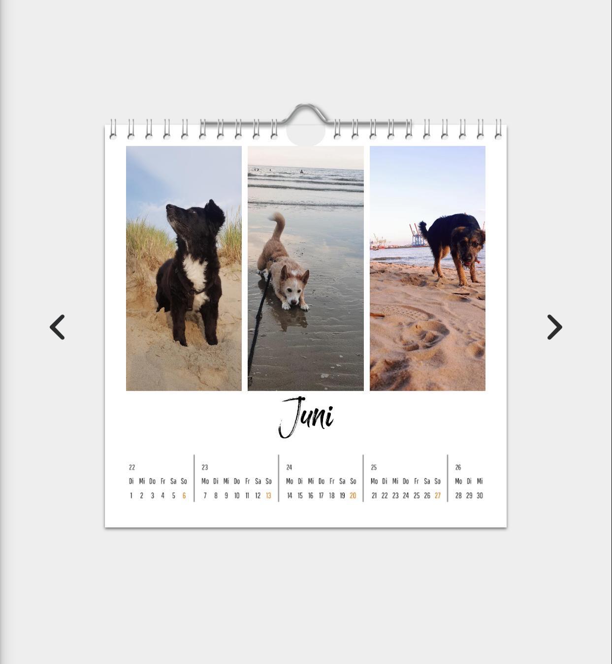 Unser Kalender 2021