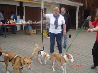Bild vom fünften Hundetreffen