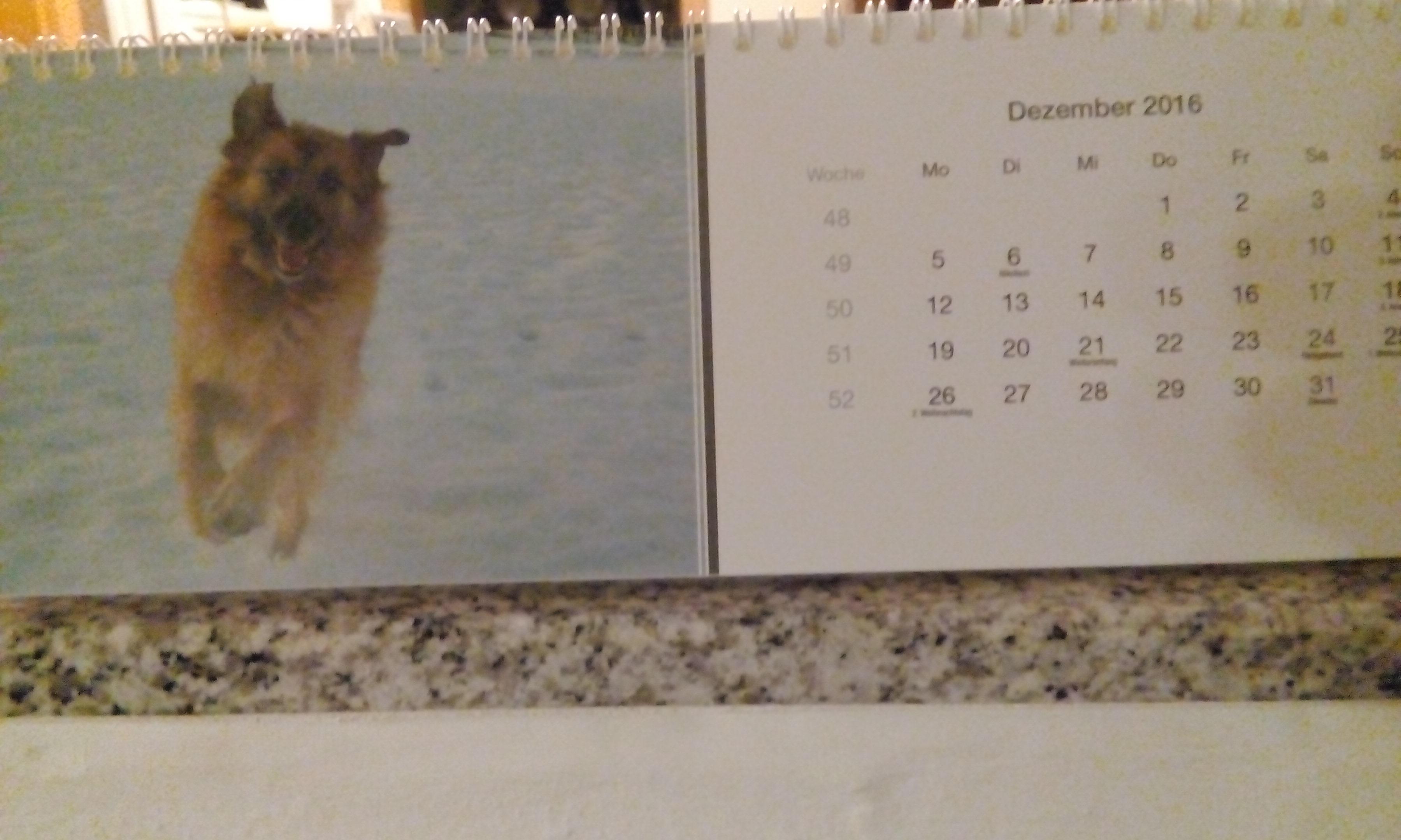 Unser Kalender 2016