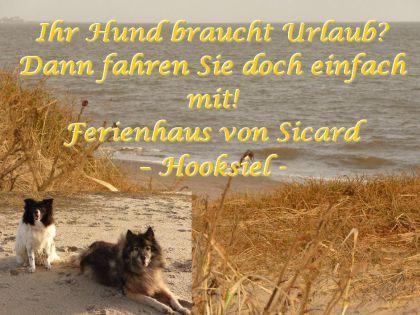 Ferienhausfriesland Sicard - Hooksiel